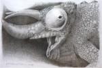 Obras de arte: America : Argentina : Neuquen : Neuquen_Capital : Hace un rato era una rana