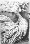 Obras de arte: America : Argentina : Neuquen : Neuquen_Capital : Pájaro rebuscado