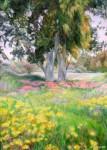 Obras de arte: Asia : Israel : Southern-Israel : Ashkelon : Eucalyptus