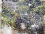 Obras de arte: Europa : España : Castilla_La_Mancha_Toledo : QUINTANAR : CHARCOS