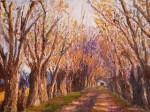 Obras de arte: America : Argentina : Cordoba : Rio_Ceballos : Un largo camino
