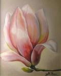 Obras de arte: Europa : España : Andalucía_Granada : armilla : magnolia rosa