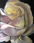 Obras de arte: Europa : España : Andalucía_Granada : armilla : rosa desbordante