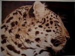 Obras de arte: Europa : España : Madrid : alcala_de_henares : leopardo