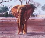 Obras de arte: America : Argentina : Buenos_Aires : Vicente_Lopez : Un elefante demasiado cerca