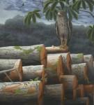Obras de arte: America : Perú : Lima : la_molina : Naturaleza Herida