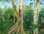 Obras de arte: America : Perú : Amazonas-Peru : Comunidad_de_Puerto_Miguel-_Yarapa : La Selva- Steve ruiz