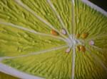 Obras de arte: America : Colombia : Valle_del_Cauca : Cali : limon a la mitad