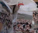 Obras de arte: America : Argentina : Buenos_Aires : Ciudad_de_Buenos_Aires : Reciclaje (detalle)
