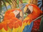 Obras de arte: America : Venezuela : Miranda : Caracas_ciudad : Guacamayas