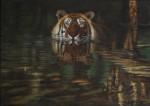 Africa y animales salvajes