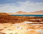 Obras de arte: Europa : España : Canarias_Las_Palmas : Puerto_del_Rosario : Gaviotas en Punta Jandía