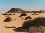Obras de arte: Europa : España : Canarias_Las_Palmas : Puerto_del_Rosario : Dunas en montaña roja