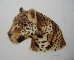 Obras de arte: Europa : España : Cantabria : Santander : Leopardo