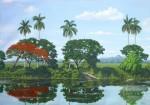 Obras de arte: America : Cuba : Matanzas : naranjal : ´´secretos de una ribera´´