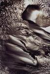 Obras de arte: America : Argentina : Chubut : Trelew : Sin Título