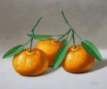 Obras de arte: America : México : Mexico_Distrito-Federal : villa_obregon : mandarinas