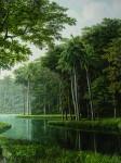 Obras de arte: America : Costa_Rica : San_Jose : SanPedro : RIO SERPENTEANDO EL BOSQUE