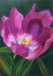 Obras de arte: America : Colombia : Santander_colombia : Bucaramanga : flor 4