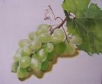 Obras de arte: Europa : España : Valencia : valencia_ciudad : Racimo de uvas
