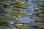 Obras de arte: Europa : España : Cantabria : Santander : el color del agua V