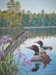 Obras de arte: America : Rep_Dominicana : Santiago : rep._imperial : patos silvestres