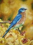 Obras de arte: America : Rep_Dominicana : Santiago : rep._imperial : BLUE BIRD