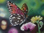 Obras de arte: Europa : España : Murcia : cartagena : mariposa